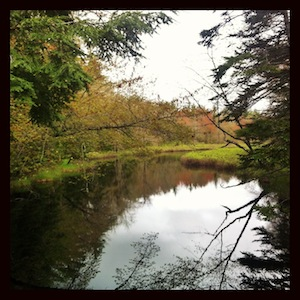 Kejimkujik Watershed Habitats