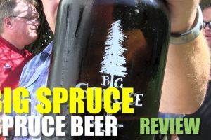Big Spruce – Tip of The Spear