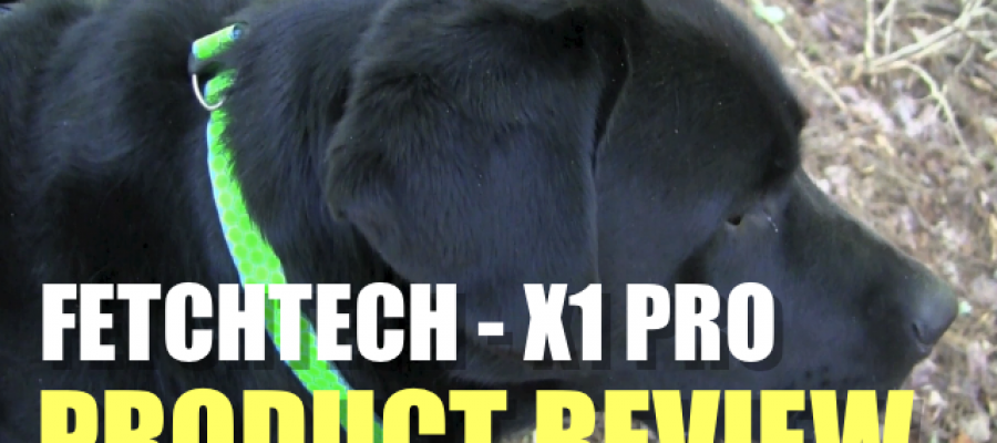 Fetchtech Dog Collar and Leash