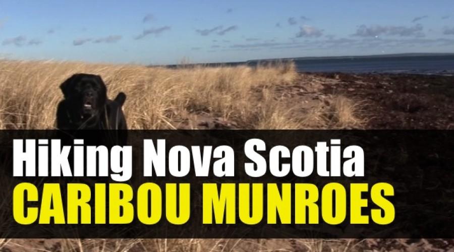 Caribou Munroes Island Provincial Park