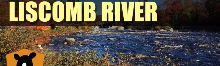 Hiking Liscomb River Trail