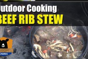 Korean Beef Short Rib Stew In Lodge Dutch Oven