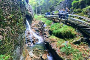 Hiking The Flume Gorge At Franconia Notch State Park