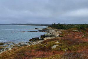 30 Minute Hike – Coastal Hike Along Clam Harbour – Nova Scotia