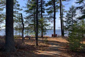 30 Minute Hike – Rogers Brook & Grafton Woods – Kejimkujik Nova Scotia